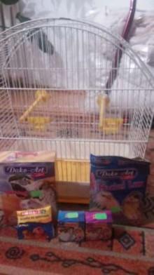 klatka dla kanarków/innych ptaków