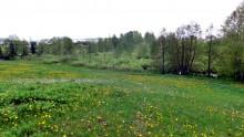 Pokłady Torfu Żubryn, gm Szypliszki 5935 m2