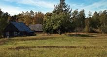 Siedlisko w atrakcyjnej okolicy, gmina Jeleniewo