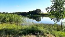 Działka przy jeziorze Przerośl, jezioro Krzywólka 3307 m2