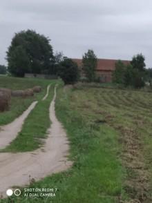 siedlisko gospodarstwo powierzchnia 3,5 hektara