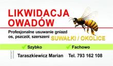 Usuwanie, likwidacja szerszeni ,os oraz pszczół