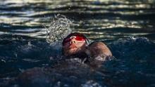 Pływanie. Po dyktando Juvenii Białystok i MUKS Suwałki [zdjęcia]