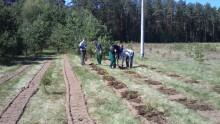 Więźniowie posadzili prawie 2000 drzewek [zdjęcia]