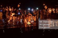 Palinocka w Dowspudzie
