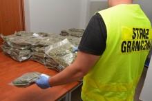 Przechwycili ponad 40 kg marihuany. Do sądu trafił właśnie wniosek