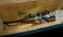 Nielegalna broń w ulu. Z Winchesterem z lunetą na pszczoły