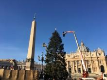 Bożonarodzeniowa Choinka z Polski rozbłysnęła w Watykanie!