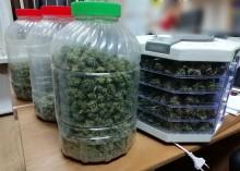 Augustów, Ełk. Mieli prawie 4 kg marihuany [zdjęcia]
