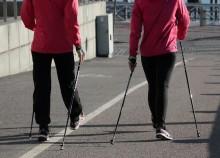 W województwie podlaskim rozpoczynają się bezpłatne treningi nordic walking