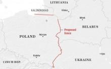 ASF. Najdłuższy plot świata na wschodniej granicy Polski – koszty większe niż korzyści?