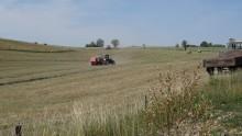 Rolnicy mają już nie narzekać na niekorzystne umowy kontraktacyjne. Ministerstwo opracowało wzór
