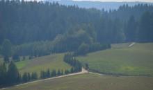 Turystyka. Za 130 tys. zł zostaną m.in. odnowione szlaki rowerowe w Suwalskim Parku Krajobrazowym