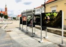 Wystawa Michała Hellera przed Suwalskim Ośrodkiem Kultury