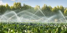 Rusza nabór na dotacje na inwestycje w nawadnianie gospodarstwa rolnego. Nawet 100 tys. złotych