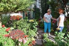 Kto w tym roku miał najpiękniejszy ogród? Wyniki poznaliśmy na pikniku [zdjęcia]
