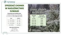 W czwartek Nadleśnictwo w Suwałkach rozpoczyna sprzedaż choinek