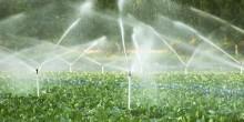 Nawadnianie. Rolnicy mogą składać wnioski do 20 lipca, mogą otrzymać do 100 tys. zł