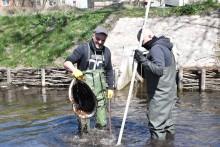 Pracownicy OSiR-u sprzątają Czarną Hańczę, bulwary i teren wokół Aquaparku [zdjęcia]