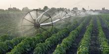 Złóż wniosek o dotację na nawadnianie gospodarstwa. Można otrzymać do 100 tys. zł