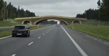Via Baltica - zgoda na budowę odcinka Szczuczyn - Ełk Południe. Ponad 23 kilometry za 700 mln zł
