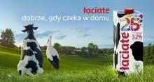 Mlekpol. Łaciate w nowej kampanii na 25-lecie najbardziej rozpoznawanej marki mleka w Polsce