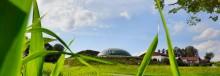 Rolnictwo. Można ubiegać się o  pieniądze na budowę  biogazowni i małych elektrowni wodnych