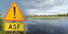 Rolnictwo - rekompensaty za klęski żywiołowe lub ASF.  Wnioski od 11 marca