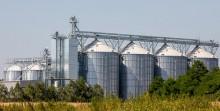 Rolnictwo. Wspólne działanie warte 100 tys. euro rocznie - wsparcie dla grup producentów