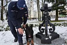 Zdzisiek - nowy pies służbowy w suwalskiej komendzie [zdjęcia]
