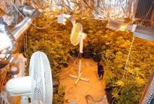 Amfetamina, marihuana. Narkotyki za ponad 130 tys. złotych w Sejnach