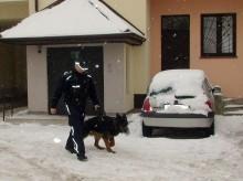 Pies doprowadził do podejrzewanego o włamanie
