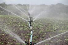 O nawadnianiu gospodarstw i nie tylko, czyli cykl szkoleń online dla rolników