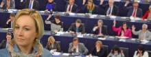 Suwalczanka z trójeczką na Eurowybory