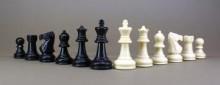 Szachiści zagrają dla Polonii
