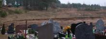 Wycinają sosny pod nowe groby