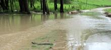 Podatek deszczowy. Spółdzielnie złożą apelację