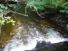 Zapłacisz za wodę z ... rzeki