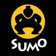Sumo. Medale i punkty suwalczan
