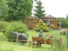 Przełom w sprawie ogrodów działkowych?