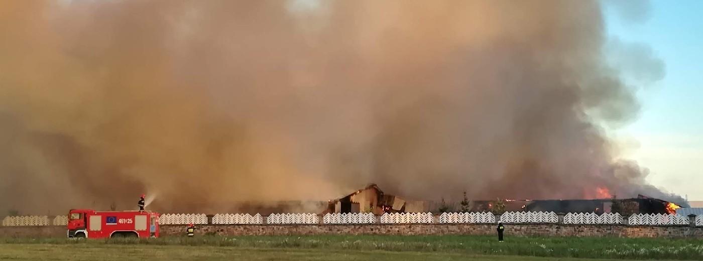 Taciewo koło Suwałk. Pożar fermy trzody chlewnej [wideo i zdjęcia]